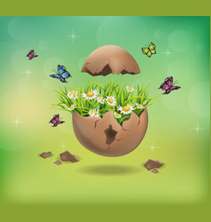 Happy easter cracked egg and chamomile flowers vector