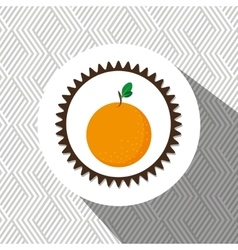 Natural product food fruit vector