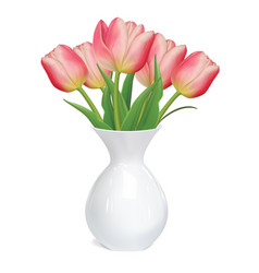 Tulips flowers in white vase vector