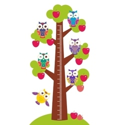 set bright colorful owls Big apple-tree with green vector image vector image