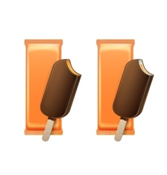 Caramel Ice Cream in Choc Glaze with Orange Foil vector image vector image