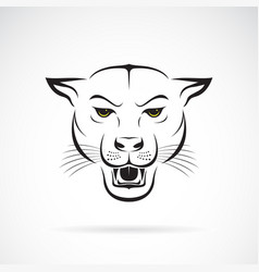 An angry panther head on white background wild vector