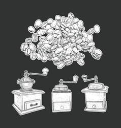 coffee mill set and coffee beans isolated vector image