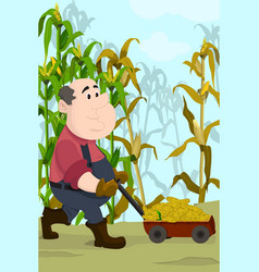 farmer harvesting corns vector image