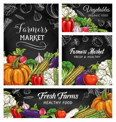 Fresh vegetable or veggie sketches on blackboard vector