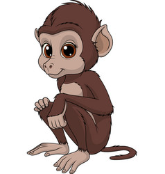 Funny cute monkey vector