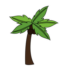 Palm icon image vector