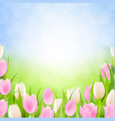 Pastel spring tulips border vector
