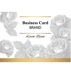 luxury brand card with roses abstract vector image