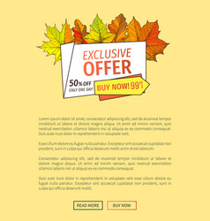 Exclusive offer thanksgiving special price poster vector