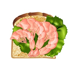 Prawn sandwich vector