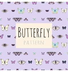 samples butterflies with space for text vector image