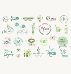 set stickers and badges for organic products vector image