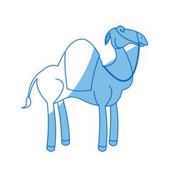 camel manger animal character christmas vector image
