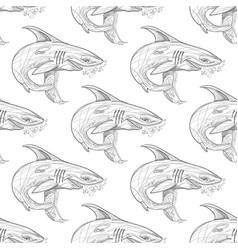 shark pattern on white background vector image