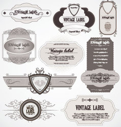 calligraphic labels vector image