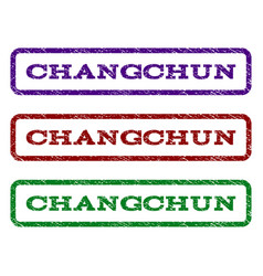 changchun watermark stamp vector image