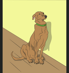 dog sitting in a room vector image