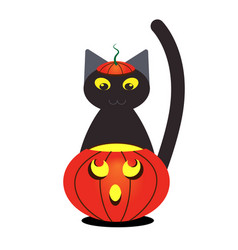 pumpkin and black cat with a hat for halloween vector image