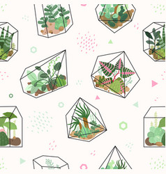 succulents summer tropical flowers terrarium and vector image