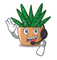 with headphone cartoon zebra cactus plant at park vector image