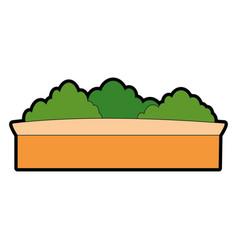 Bushes in a pot vector