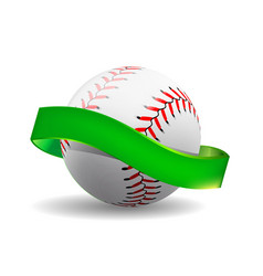 baseball on white background with green vector image