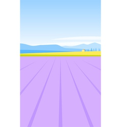 lavender field vector image