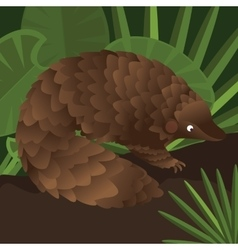 Pangolin between leaf in forest drawing vector image