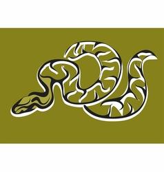 Royal python vector