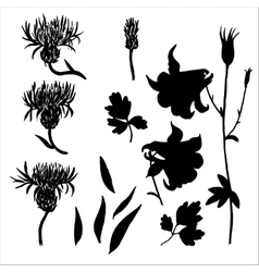 Silhouettes of flowers and leaves vector