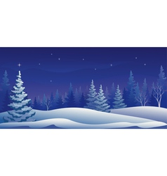 Winter night panoramic vector image