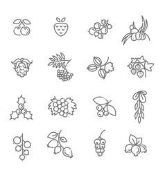 Berries icon set vector