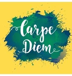 Carpe diem - latin phrase means capture moment vector