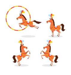 Circus horse in a beautiful suit jewelery vector