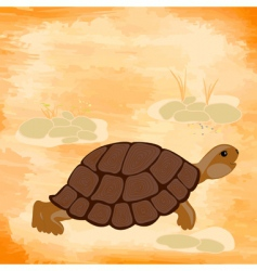 grunge background with a turtle vector image vector image