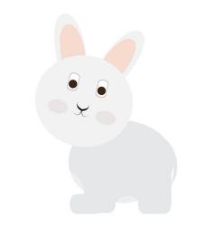 Isolated cute rabbit vector