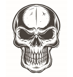 Isolated skull on white background vector image