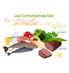 low-carbohydrate diet vector image