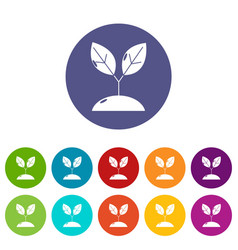 plant sprout icons set color vector image