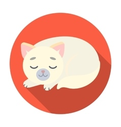 Sleeping cat icon in flat style isolated on white vector image