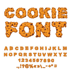 cookies font biscuits with chocolate drops vector image