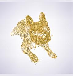 golden bulldog vector image