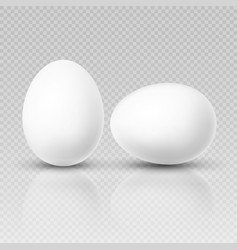 realistic chicken egg template for easter vector image