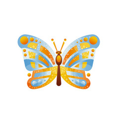 beautiful blue and yellow butterfly insect vector image