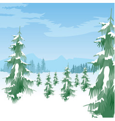 beautiful winter landscape with coniferous trees vector image