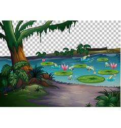 Forest swamp landscape on transparent background vector