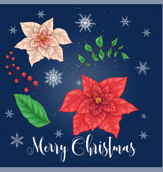 poinsettia flowers and christmas floral elements vector image