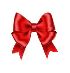 red bow with ribbon isolated on white background vector image