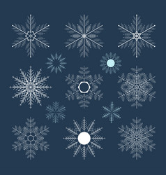 set of snowflakes on a dark background vector image